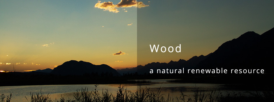 Wood - a natural renewable resource